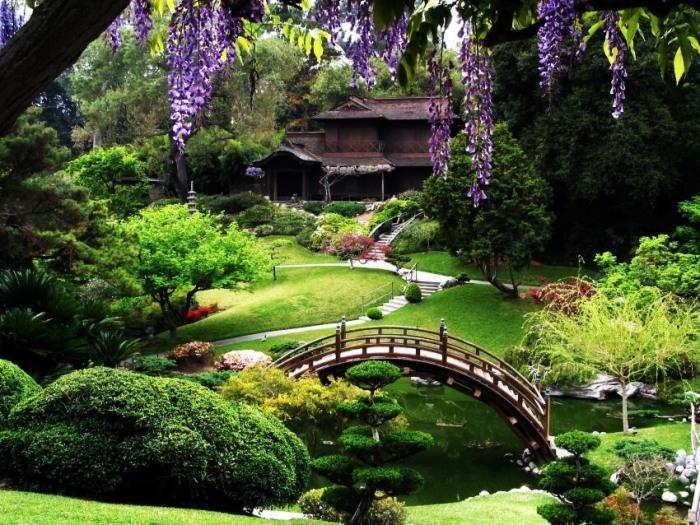 5-San-Francisco-Botanical-Garden-San-Francisco-Step-Into-the-Best-Botanical-Gardens-in-the-United-States-via-peachgarden.org_.jpg