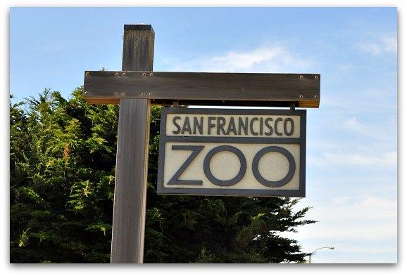 san-francisco-zoo.jpg