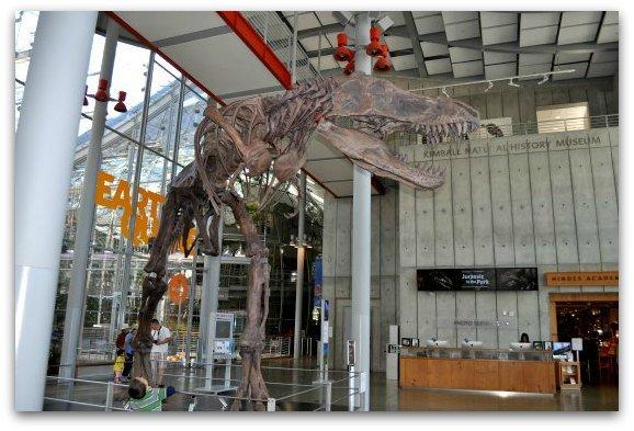 xsan-francisco-science-museum.jpg.pagespeed.ic.ZylOwsNlIk.jpg